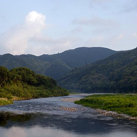 日本唯一の林業専門番組「ZIBATSUニュース」が放送スタート!