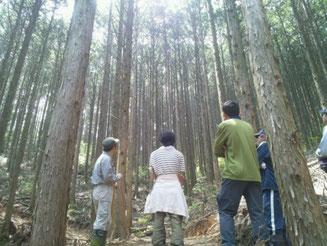関東で自伐型林業が学べます!「地球のしごと大學」が11月22日に講座を開講