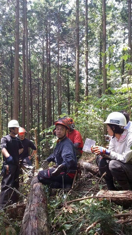"""「自分の頭で考える林業を」 5年目の若手らが愛媛で""""造材""""を学ぶ"""