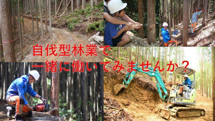 奈良県下北山村が自伐型林業による地域おこし協力隊(2017年度)を募集しています。