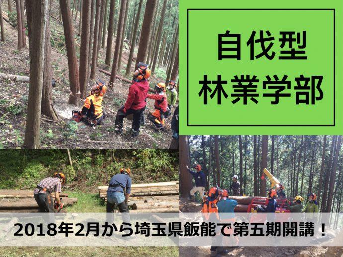 【自伐型林業を学びたい方向け】地球のしごと大學で自伐型林業学部第五期を3つのコースで募集中です。