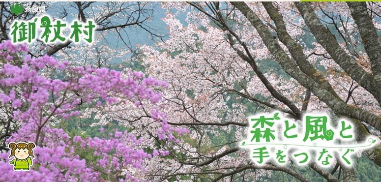 奈良県御杖村で自伐型林業家を募集中!「地域おこし協力隊」