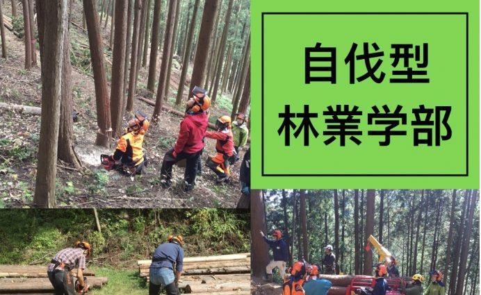 【自伐型林業を学びたい方向け】地球のしごと大學で自伐型林業学部第六期を2つのコースで募集中です。