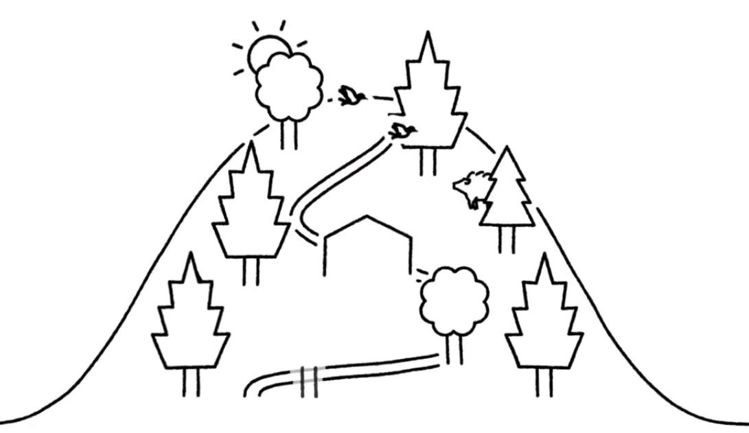 6月21日にイベント「森林大国日本─アフターコロナの社会を見据えて」をネット開催します。