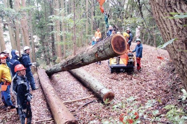 令和3年度 「南足柄市自伐型林業体験研修 」が開催されます!